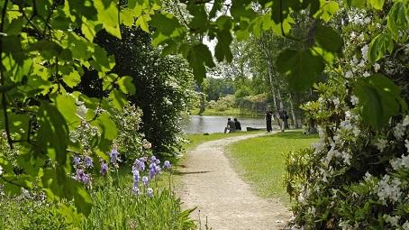 Petit chemin de promenade dans le parc du domaine de Courson